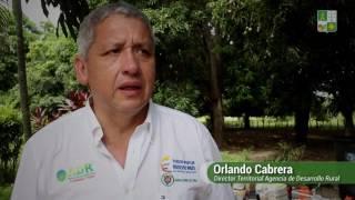 APOYO A POBLACIóN GANADERA -  GOBERNACIóN DE LA GUAJIRA
