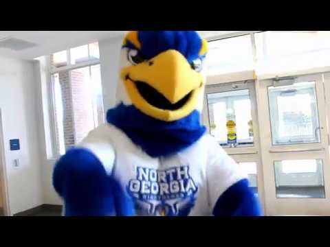 University of North Georgia Exercise is Medicine® on Campus Mascot Challenge 2017