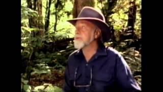 ビル・モリソンが語るシリーズ「グローバル・ガーデナー」の第3回。こ...