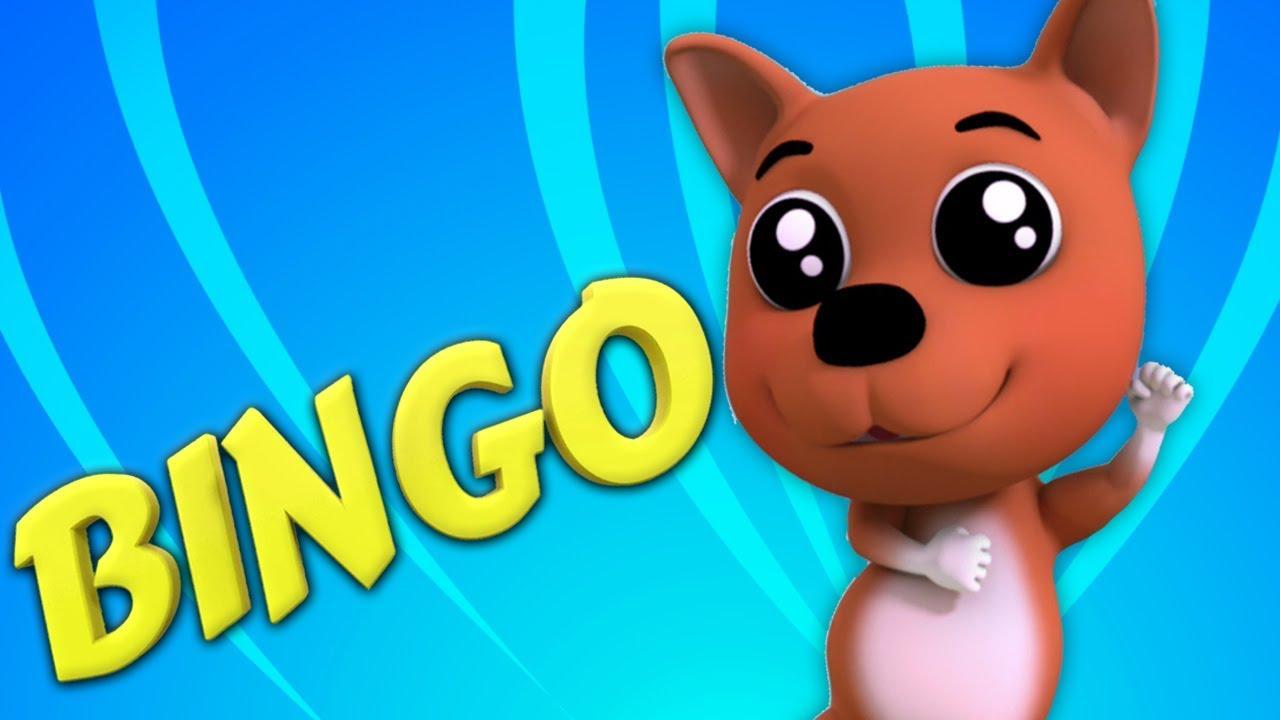 Bingo War Sein Name