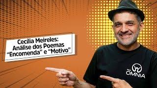 "Cecília Meireles: Análise dos Poemas ""Encomenda"" e ""Motivo"" - Brasil Escola"