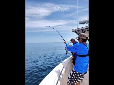 Offshore Fishing Ft. Pierce Florida