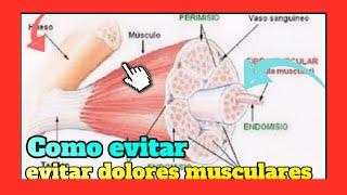 Recuperarse muscular ejercicio por dolor del como