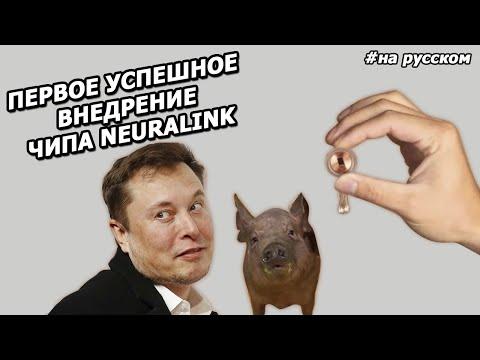Илон Маск: презентация нового ЧИПА для мозга NEURALINK |2020|