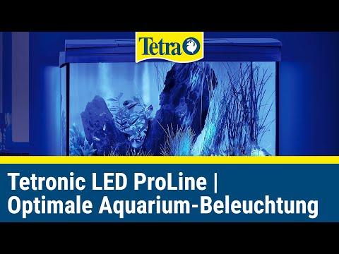Tetronic LED ProLine Unboxing | Optimale Aquarium-Beleuchtung