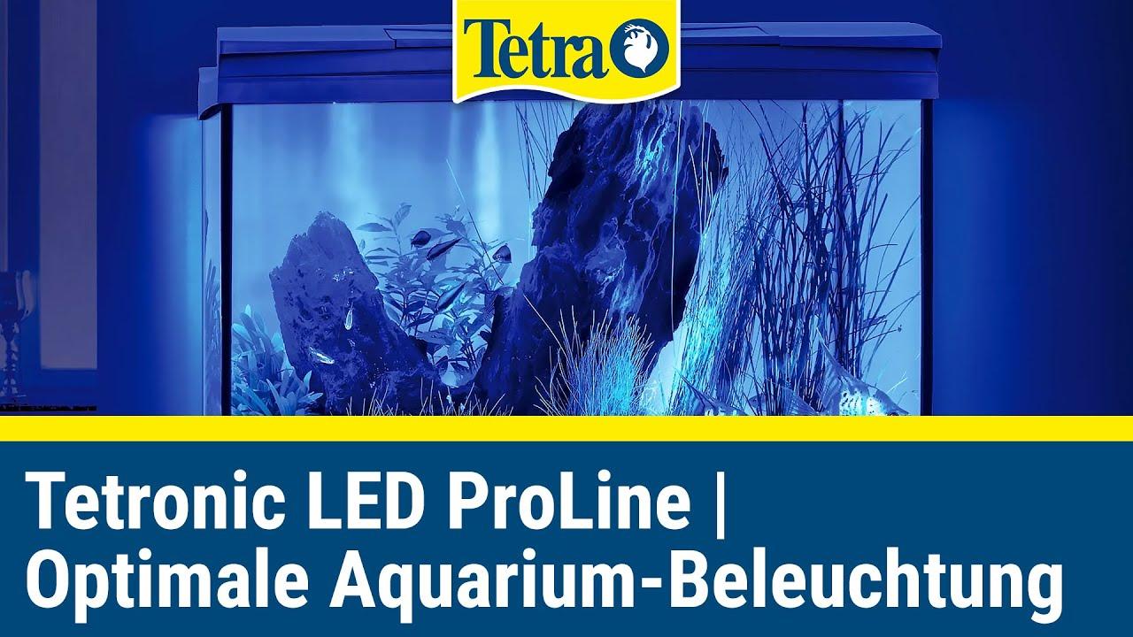 Tetronic Led Proline Unboxing Optimale Aquarium Beleuchtung Youtube
