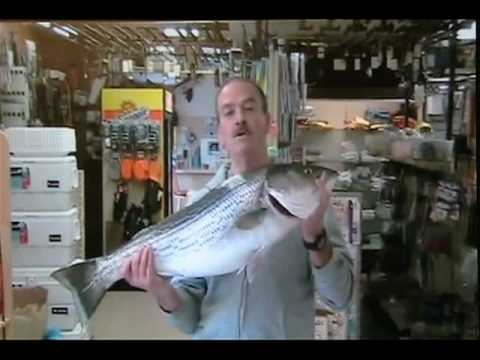 NJ News 12 BETTY AND NICKS BAIT AND TACKLE Best Kept Secrets of New Jersey.mpg