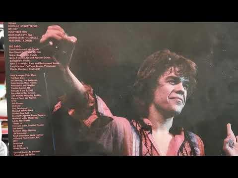 Download David Johansen - Personality Crisis - Vinyl Live It Up LP 1982