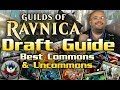 MTG – Guilds of Ravnica Draft Guide: BEST Commons & Uncommons in Each Color and Guild!