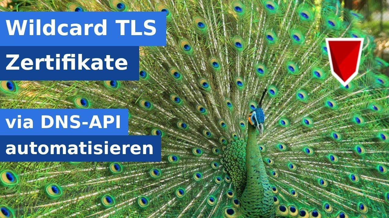 LetsEncrypt Wildcard Zertifikate automatisch erneuern (DNS)