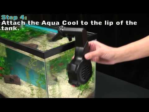 ZooMed - Aqua Cool Overview | Big Al's
