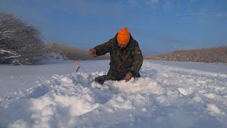 Ловля Щуки на Жерлицы Зимой Рыбалка на Жерлицы и Балансир Зимняя Рыбалка 2021 Ловля Окуня со Льда