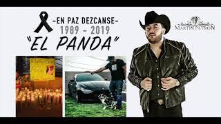 El Panda - Martin Patron (En Paz Dezcanse) 1989 - 2019