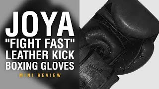Joya Fight Fast Boxing Gloves - Fight Gear Focus Mini Review