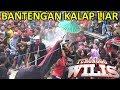 Bantengan Kalap Ngamuk Liar Ganas Polll | Turonggo Wilis Live Mbadug 2018