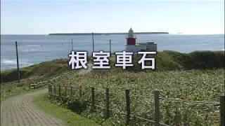 花咲車石(イメージ画像)