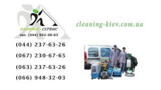видео Некоторые способы чистки ковролина в домашних условиях
