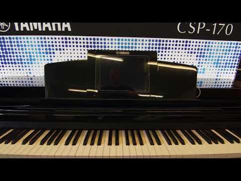 Pianos - Hayes Music, Southampton
