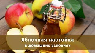 Яблочная настойка в домашних условиях. Как сделать яблочную настойку?