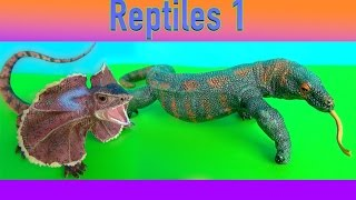 Kids Toys Gila Monster Frill-Necked Lizard Bearded & Komodo Dragon Learn about LIZARDS in English