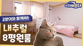 고양이와 함께 사는 8평 원룸 꾸미기! 실용적인 가구배…