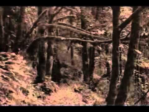 POOKKALE SNEHICHA PENKIDAVE - ARDRA GEETHANGAL  - MALAYALAM MELODIES FROM SATHAR AL KARAN