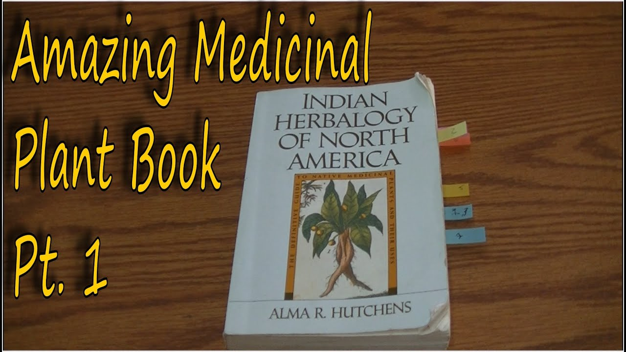medicinal plant book indian herbalogy of north america youtube