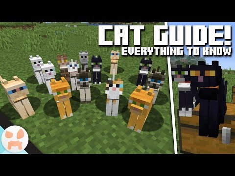 CAT GUIDE! | Cat Info & Variants| Minecraft 1.14 - Village and Pillage