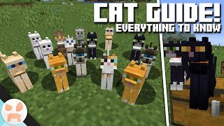 Cat Guide Cat Info Variants Minecraft 1 14 Village And Pillage Youtube