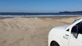 태안 신두리 사구해변 차박여행