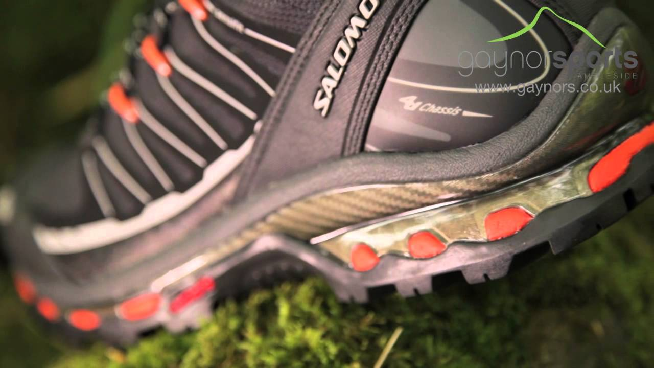 meilleures baskets fdde6 11c84 Salomon Cosmic 4D 2 GTX. www.gaynors.co.uk
