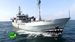 Морской дозор (ТРЕЙЛЕР)
