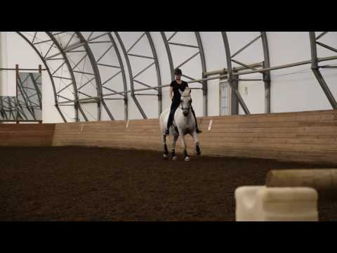 Sunny & Laura - Janet Foy Dressage Clinic Part 2