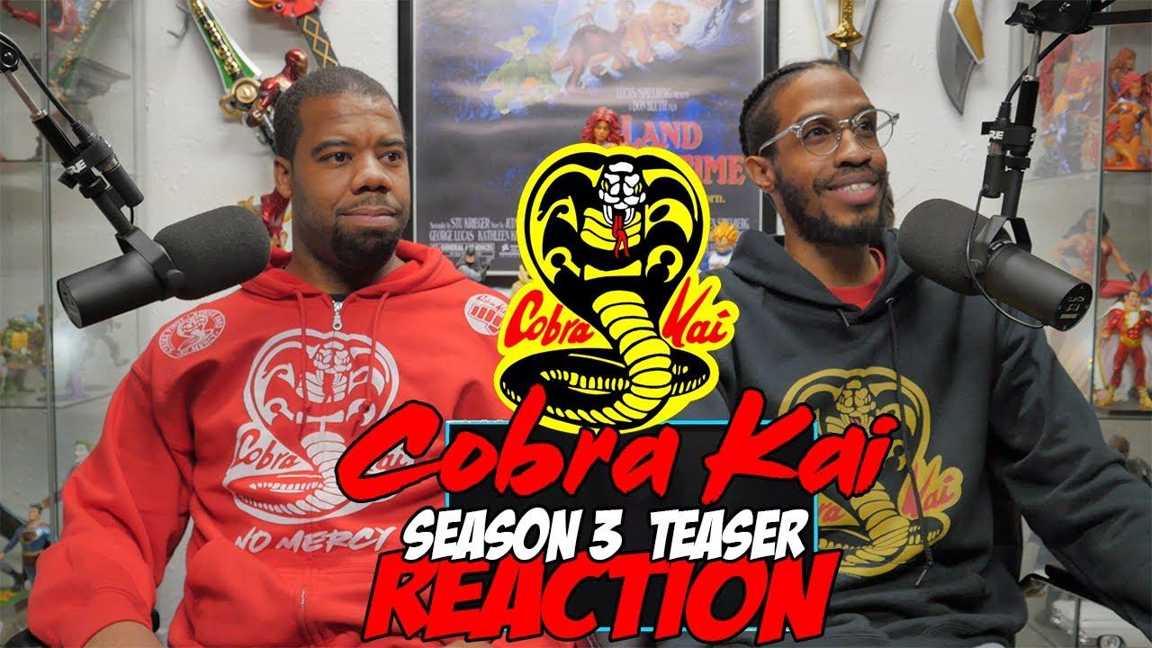 Download Cobra Kai Season 3  Teaser reaction