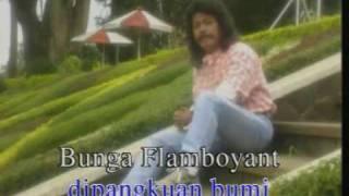 Bimbo - Flamboyan