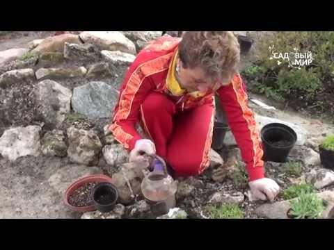 Как сделать горку для цветов в саду своими руками видео