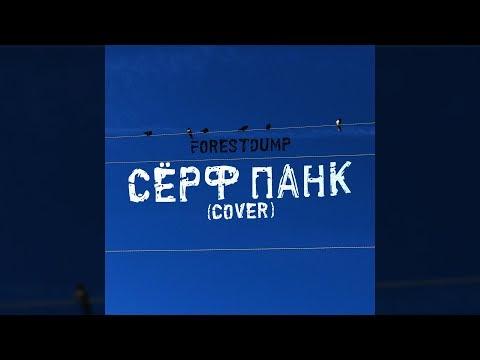 Forestdump - сёрф панк (ssshhhiiittt Cover)