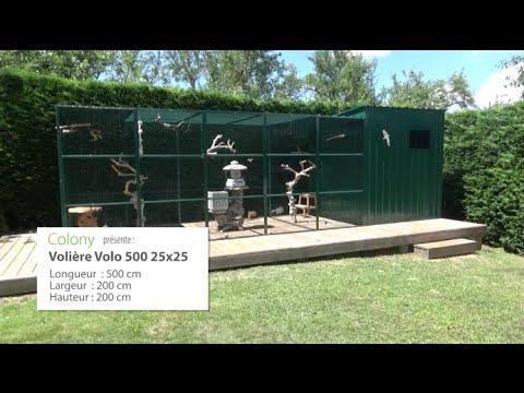 Volière Volo 500 pour perroquets et perruches. - YouTube