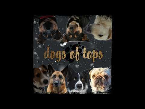 Zapraszamy na Dogs of Tops 😏
