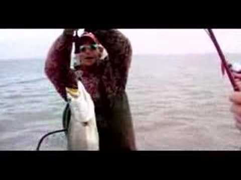 12lb trout in Baffin Bay