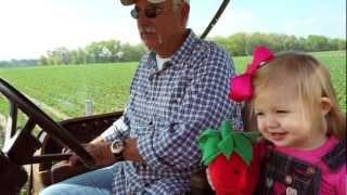 Florida Strawberry Farmer Mark Harrell