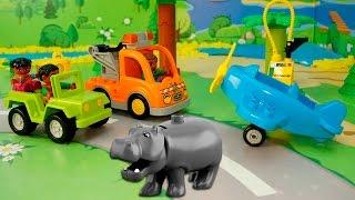 Мультфильмы с игрушками - Гонки по саванне. Видео для детей про машинки и животных