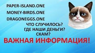 PAPER-ISLAND.ONE | MONEY-BIRDS.ONE  | DRAGONEGGS.ONE ЧТО С ПРОЕКТАМИ?ВАЖНАЯ ИНФОРМАЦИЯ ДЛЯ ВСЕХ