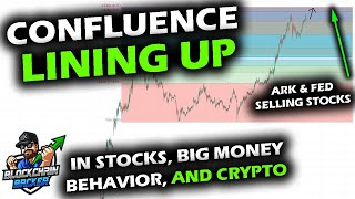 BIG MONEY SHOWING THEIR HAND as Bitcoin, Altcoin Market and Stocks Start Showing Confluence
