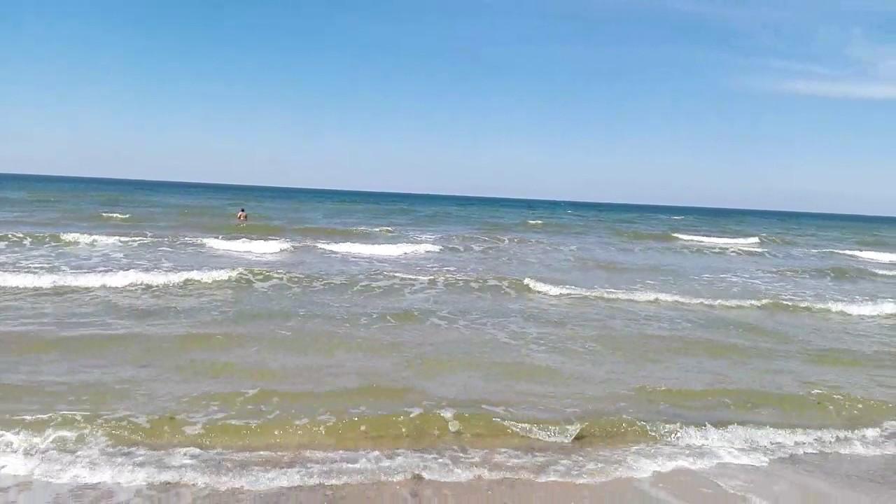 свадебный азовское море фото погода эти зубастые гиганты