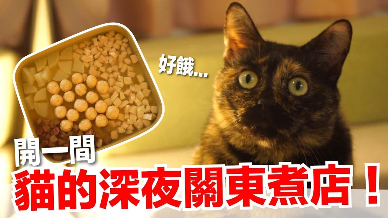 【好味小姐】開一間貓的深夜關東煮店! 貓副食 貓鮮食廚房EP204