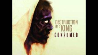 Watch Destruction Of A King Ill Keep Flying video