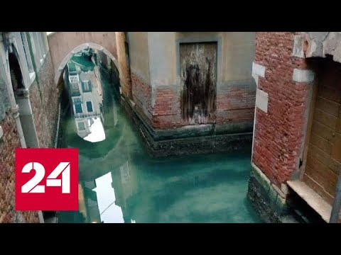 Коронавирус вывел Венецию на чистую воду - Россия 24