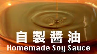 【Eng Sub】發酵 18 個月古法醬油  用醬油麴種開始做  自製醬油   Homemade Soy Sauce