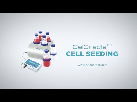 rolling-with-the-tide:-celcradle™---cell-seeding-[english]